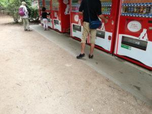 清水公園のアスレチックの自動販売機