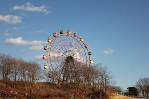 東京ドイツ村の観覧車