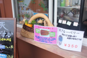 富士見パノラマのルバーブソフトクリーム