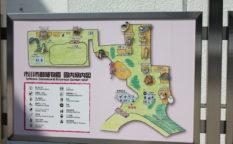市川市動植物は動物との触れ合いだけでなくミニ鉄道・遊具でも楽しめる!
