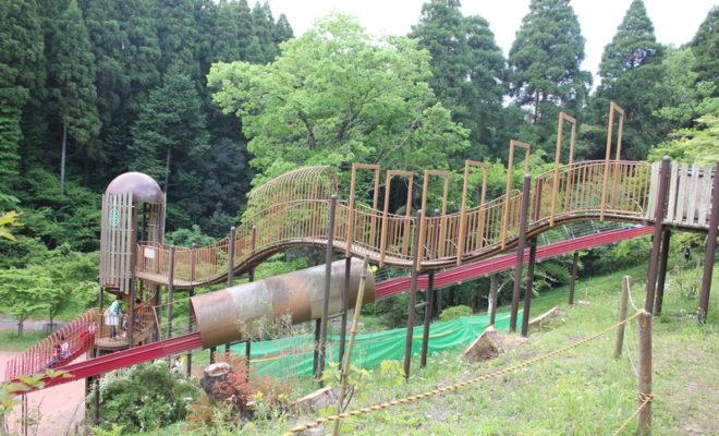 千葉市昭和の森公園の滑り台は30分待ちになるほど人気!