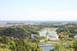 昭和の森の展望台