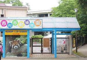 駐車場から市川市動植物園