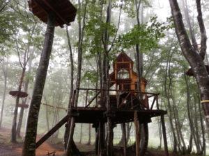 冒険の森公園のツリーハウス