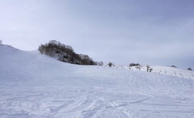 スキー検定(バッジテスト)の試験内容とスキー場によって異なる受験料について