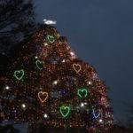 中山競馬場の2018年イルミネーション(クリスマスツリー点灯式)は11月25日!?