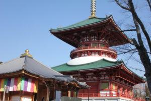 成田山新勝寺の醫王殿、平和大塔
