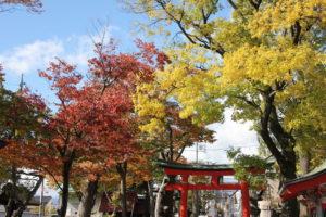 七五三の写真撮影を松本市の深志神社