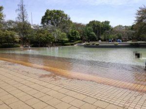 船橋アンデルセン公園で水遊びできる場所は「にじの池」