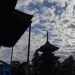 成田太鼓祭(なりたたいこまつり)の2020年は開催延期が決定!いつ開催されるのか?